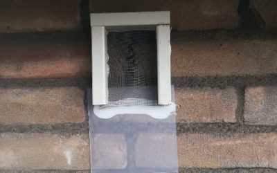 Wet natuurbescherming: omgaan met vleermuizen bij projecten