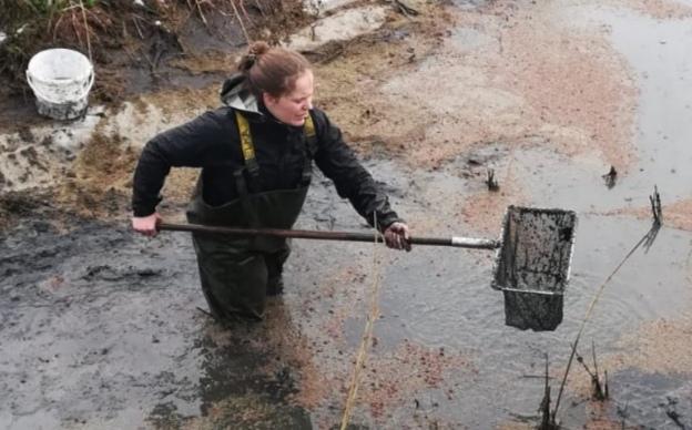 Zorgplicht Wet natuurbescherming: afvangen van vissen